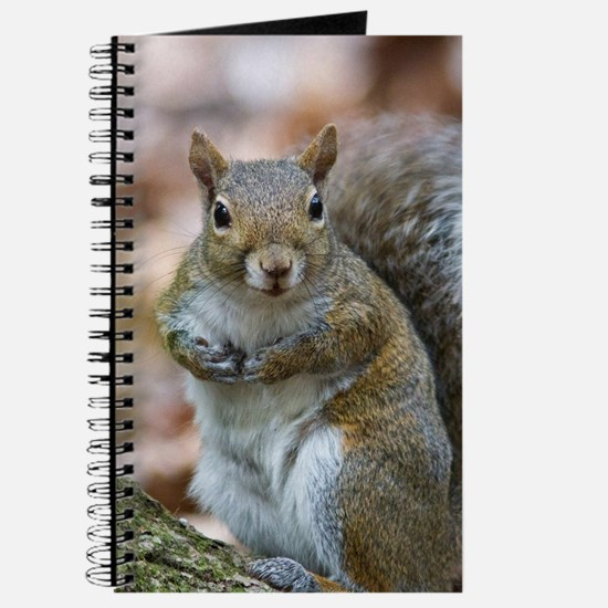 Cute Squirrel Journal