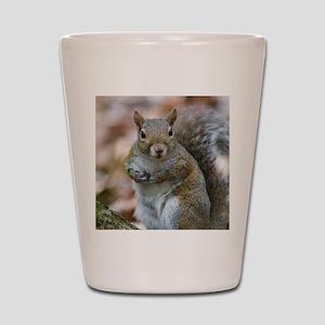 Cute Squirrel Shot Glass