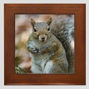 Cute Squirrel Framed Tile