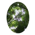 Forest Canopy (Sugar Skull) Ornament (Oval)