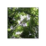 Forest Canopy (Sugar Skull) Square Sticker 3