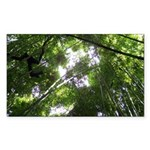 Forest Canopy (Sugar Skull) Sticker (Rectangle)