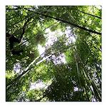 Forest Canopy (Sugar Sku Square Car Magnet 3
