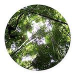 Forest Canopy (Sugar Skull) Round Car Magnet