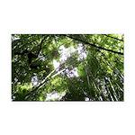 Forest Canopy (Sugar Skull) Rectangle Car Magnet