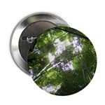 Forest Canopy (Sugar Skull) 2.25