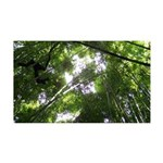 Forest Canopy (Sugar Skull) 35x21 Wall Decal