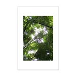 Forest Canopy (Sugar Skull) Mini Poster Print