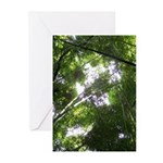Forest Canopy (Sugar Sku Greeting Cards (Pk of 10)