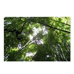 Forest Canopy (Sugar Skul Postcards (Package of 8)