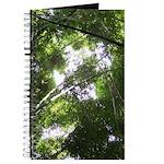 Forest Canopy (Sugar Skull) Journal