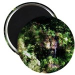 Island Forest Magnets