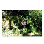 Island Forest Postcards (Package of 8)