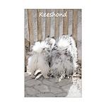 Keeshonds at the Gate Mini Poster Print