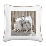 Keeshonds at the Gate Square Canvas Pillow