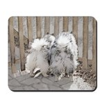 Keeshonds at the Gate Mousepad