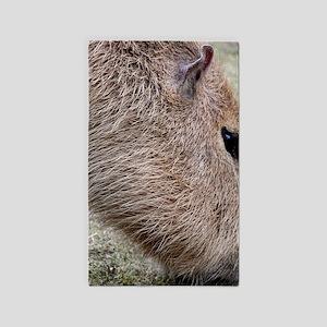 capybara 2 3'x5' Area Rug