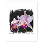 Orquidea Cattleya Trianae Small Poster