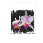 Orquidea Cattleya Trianae Postcards (Package of 8)