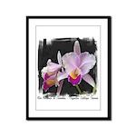 Orquidea Cattleya Trianae Framed Panel Print