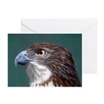 Hawkeye: Greeting Cards (Pk of 10)