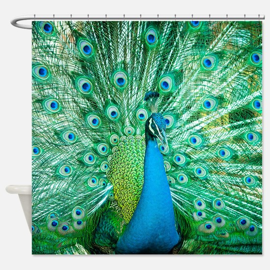 Beautiful Peacock Shower Curtain