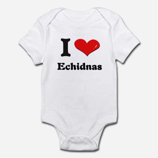 I love echidnas  Infant Bodysuit