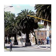Palm Trees on Boulevard Tile Coaster
