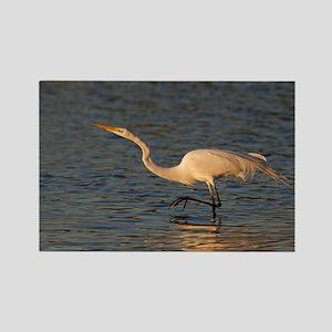 great white egret Rectangle Magnet