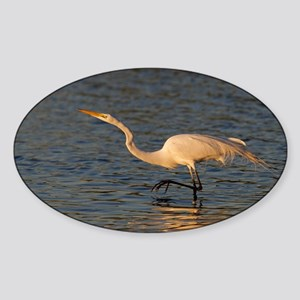 great white egret Sticker (Oval)