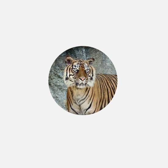 Funny Tiger head Mini Button