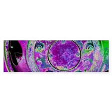 Purple Green Wheel Bumper Sticker