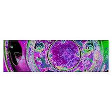 Purple Green Wheel Bumper Sticker