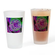Purple Green Wheel Drinking Glass