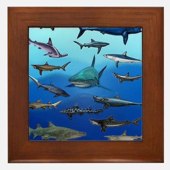Shark Gathering Framed Tile