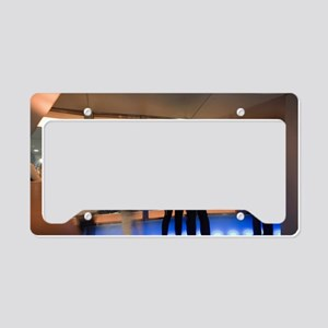 tv tower viewing deck License Plate Holder