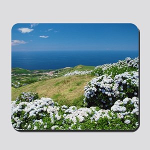 Hydrangeas everywhere Mousepad
