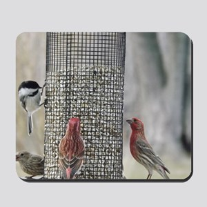 Wisconsin Birds at the feeder Mousepad