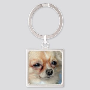 i love dog Keychains