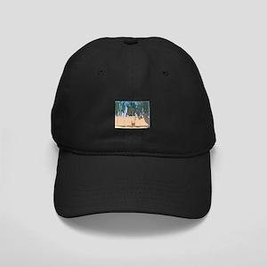 Adobe Wall #1 Black Cap