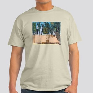 Adobe Wall #1 Light T-Shirt