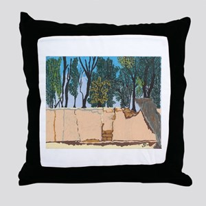 Adobe Wall #1 Throw Pillow