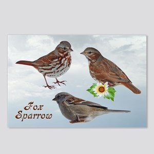 Backyard Birds Postcards (Package of 8)