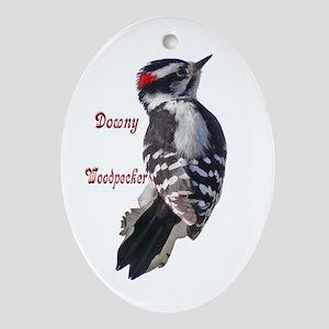 Backyard Birds Oval Ornament