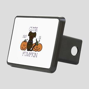 Cute As A Pumpkin Hitch Cover