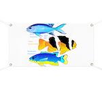 3 Damselfish Banner