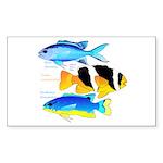 3 Damselfish Sticker