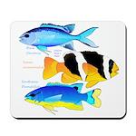 3 Damselfish Mousepad