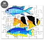 3 Damselfish Puzzle