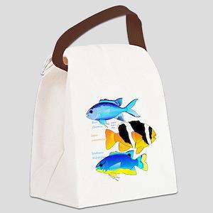 3 Damselfish c Canvas Lunch Bag